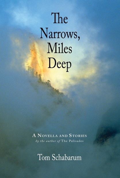 Narrows Cover 2.5
